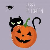 Vector Graphics. Beautiful, Bright Halloween Illustration. Halloween Pumpkin Cartoon Character. Blac poster