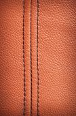 Leather Texture With Selvage