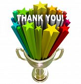picture of appreciation  - A golden trophy with stars and the words Thank You shooting out of it in recognition and appreciation of a job well done or your tireless efforts and work - JPG