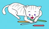 a white cat playing colored pencils