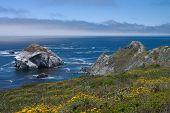 coastline of North California