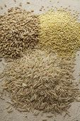 pic of sorghum  - Heap of wheat - JPG