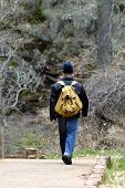 Hiker With Backpack