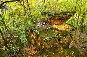 Illinois Autmn Landscape