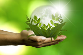 pic of gases  - adult hand with plants and globe - JPG