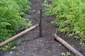 Gardening Tools In The Vegetable Garden