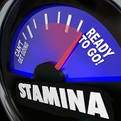 The word Stamina on a fuel gauge measuring your drive, power, energy or passion level for rising to
