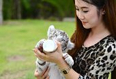 stock photo of white tiger cub  - pretty women feeding baby white bengal tiger - JPG