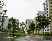 Green Estate