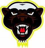 Honey Badger Mascot Head