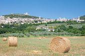 Assisi,Umbria,Italy