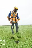 stock photo of electric trimmer  - lawn mower worker man cutting grass in green field - JPG