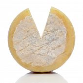 closeup of a cured cheese on a white background