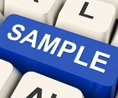 Sample Key Means Trial Or Sampling.