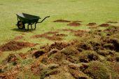 Wheelbarrow And Grass Sods