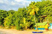 Caribbean Beach View