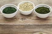 kelp, chlorella and Hawaiian spirulina powders - nutritional supplements from a sea - ceramic bowls against grained wood