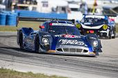 Sebring, FL - Mar 13, 2014:  The Michael Shank Ford EcoBoost Need For Speed car races through the tu