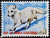 EQUATORIAL GUINEA - CIRCA 1974: Stamp printed in Guinea shows Arctic fox North America