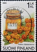 FINLAND - CIRCA 2005: A stamp printed in Finland shows cloudberry Rubus chamaemorus circa 2005