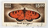 INDIA - CIRCA 1963: A stamp printed in India shows Butterfly circa 1963