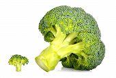 Big And Small Fresh Broccoli