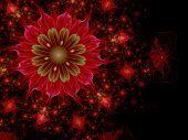 Dark Red And Green Fractal Flower
