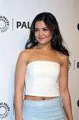 LOS ANGELES - MAR 22:  Danielle Campbell at the PaleyFEST 2014 -