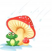 Mushroom with a toad cartoon