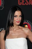 LOS ANGELES - MAR 20:  Dayanara Torres at the