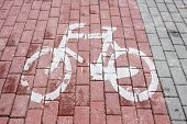 image of bike path  - marked bike path bike on the road