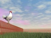 Rooster crowing - 3D render