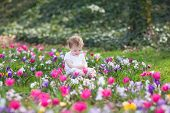 Beautiful Funny Baby Girl Playing In A Field Of Flowers