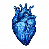 Vector heart isolated on a white backgrounds. Felt-tip pen sketch.