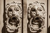 Door knobs two lions protecting the entrance
