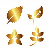 Golden Leaf Vector