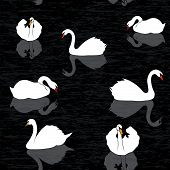 Bird Water Background, Swans And Lake Seamless Pattern,