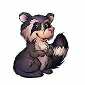 Vector illustration of raccoon in cartoon style