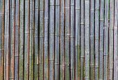 Background Of An Old And Dry Bamboo Fence