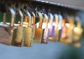 Locks On A Bridge Railing