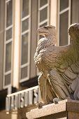 A águia da Estação de Penn