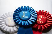 foto of rosettes  - 1st place blue winners rosette or badge to be awarded as a prize to the winner of a competition made of pleated blue ribbon with central text in gold with a 2nd place red rosette behind - JPG