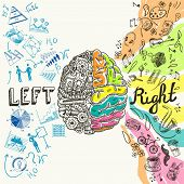 pic of creativity  - Brain left analytical and right creative hemispheres sketch concept vector illustration - JPG
