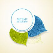 Autumn background with leaves. Linden in blue and green. Vector illustration. Eps 10
