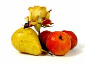 fruits with rose