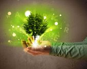 Young woman holding a glowing tree in her hand