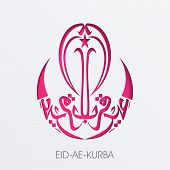 Arabic Islamic calligraphy of text Eid-Ae-Kurba in magenta color on grey background for Muslim commu