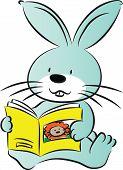 rabbit reading