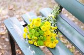 Beautiful bouquet of chrysanthemums flowers on wooden bench in park