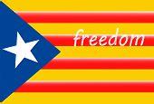 Estelada; Catalan Independence Flag